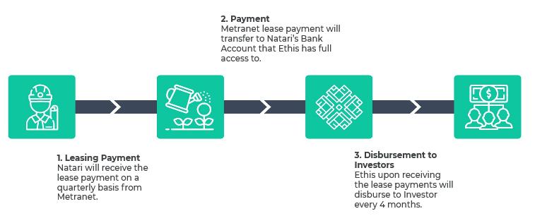 Natari-Investment-Structure